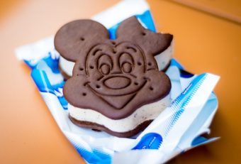 Losing Weight On Your Disney Trip – How To Avoid The Enviable Weight Gain When Visiting The Mouse's House